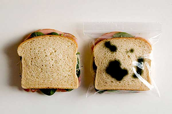Anti-theft-lunch-bags