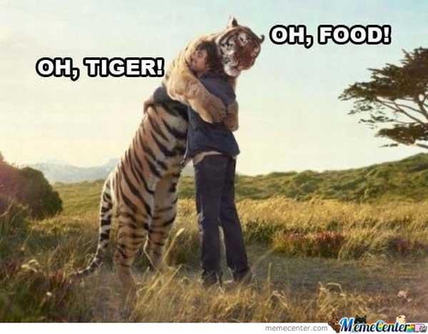 11-tiger
