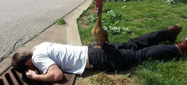 5-duckling